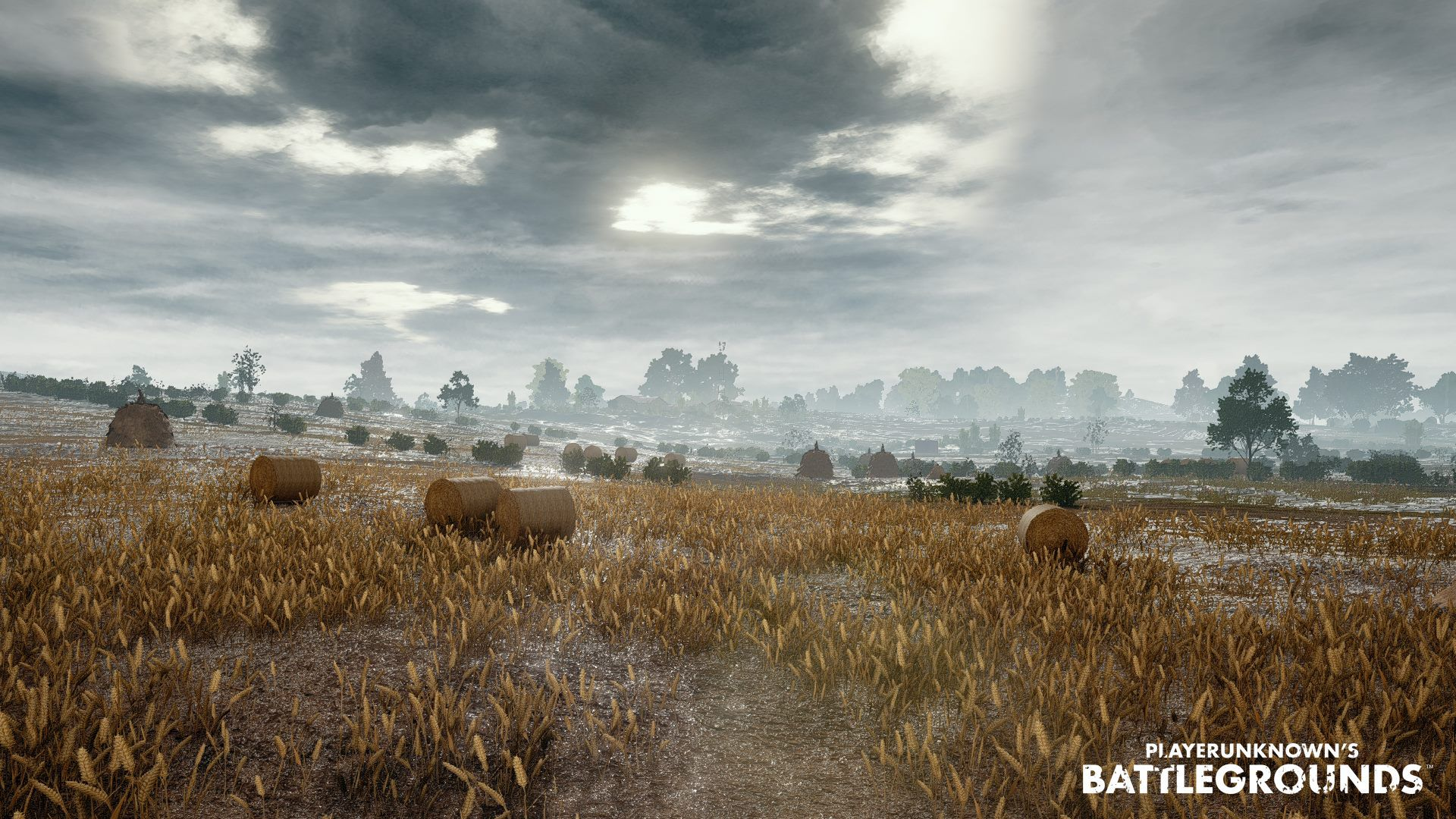 Pubg Map Hd Wallpaper: PlayerUnknown's Battlegrounds: PUBG Wallpapers And Photos