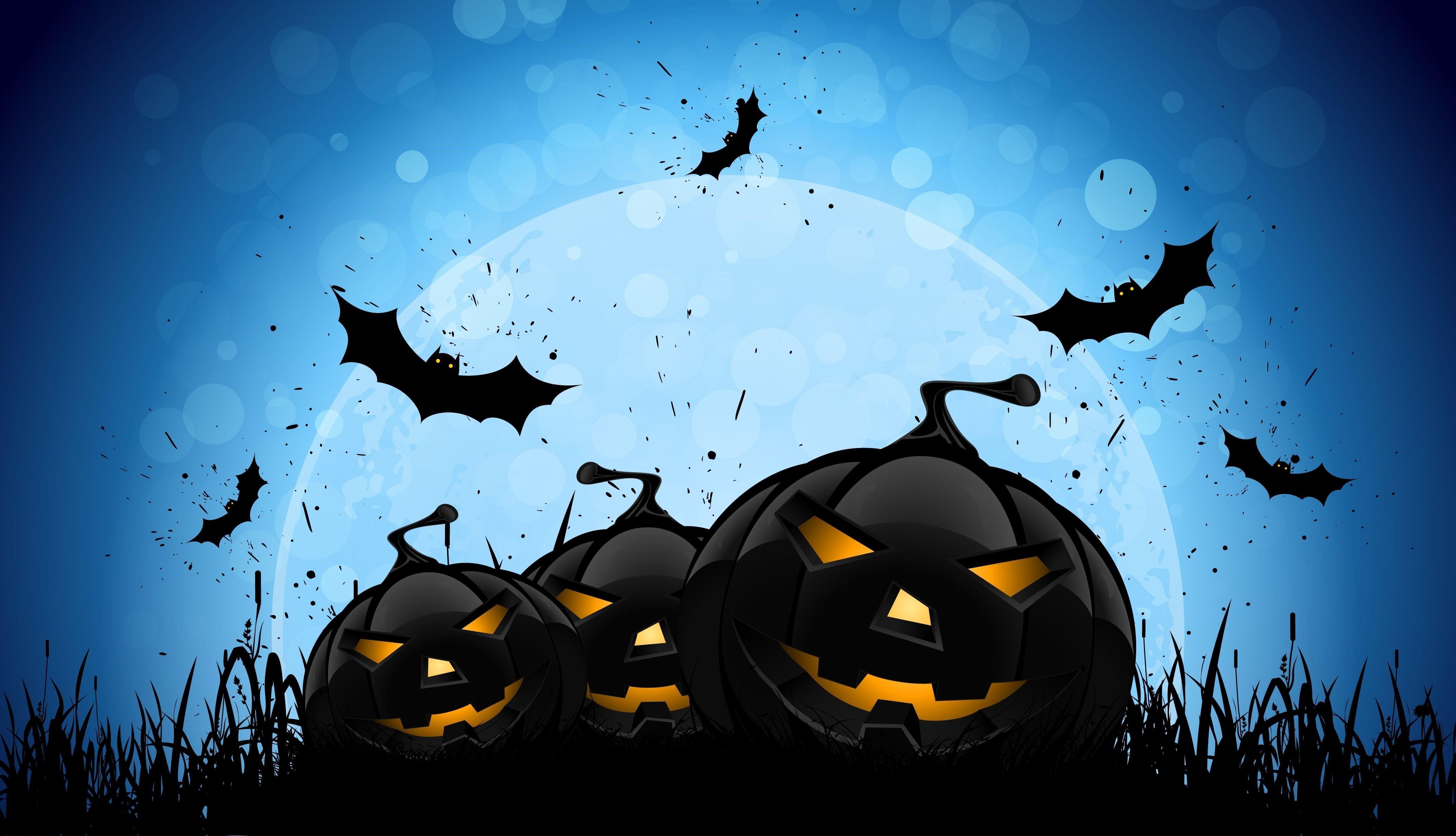 Halloween Bat And Pumpkin HD Wallpaper