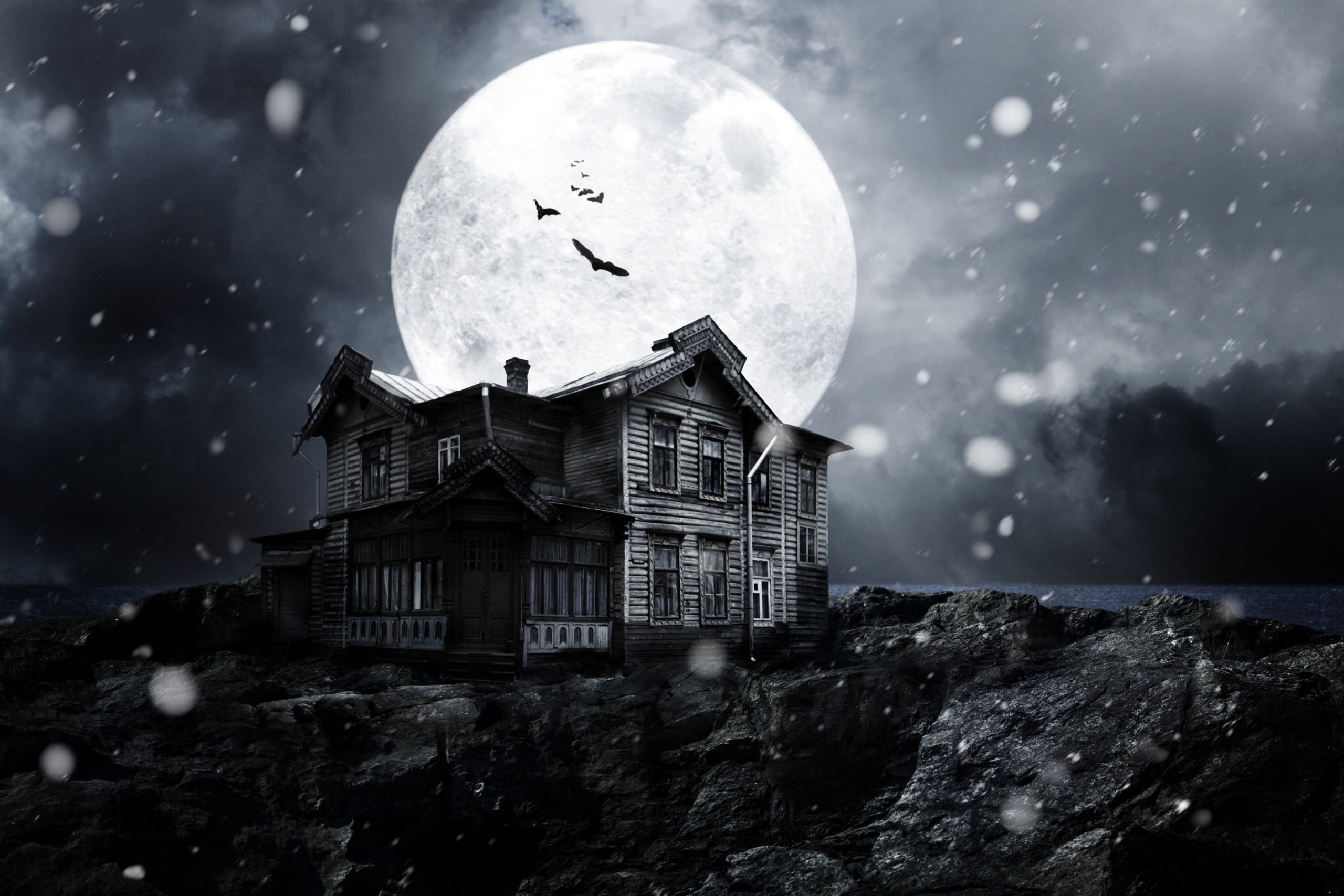Haunted House 2K Full HD 2560x1707 black,green,white,pink Photos and Wallpapers