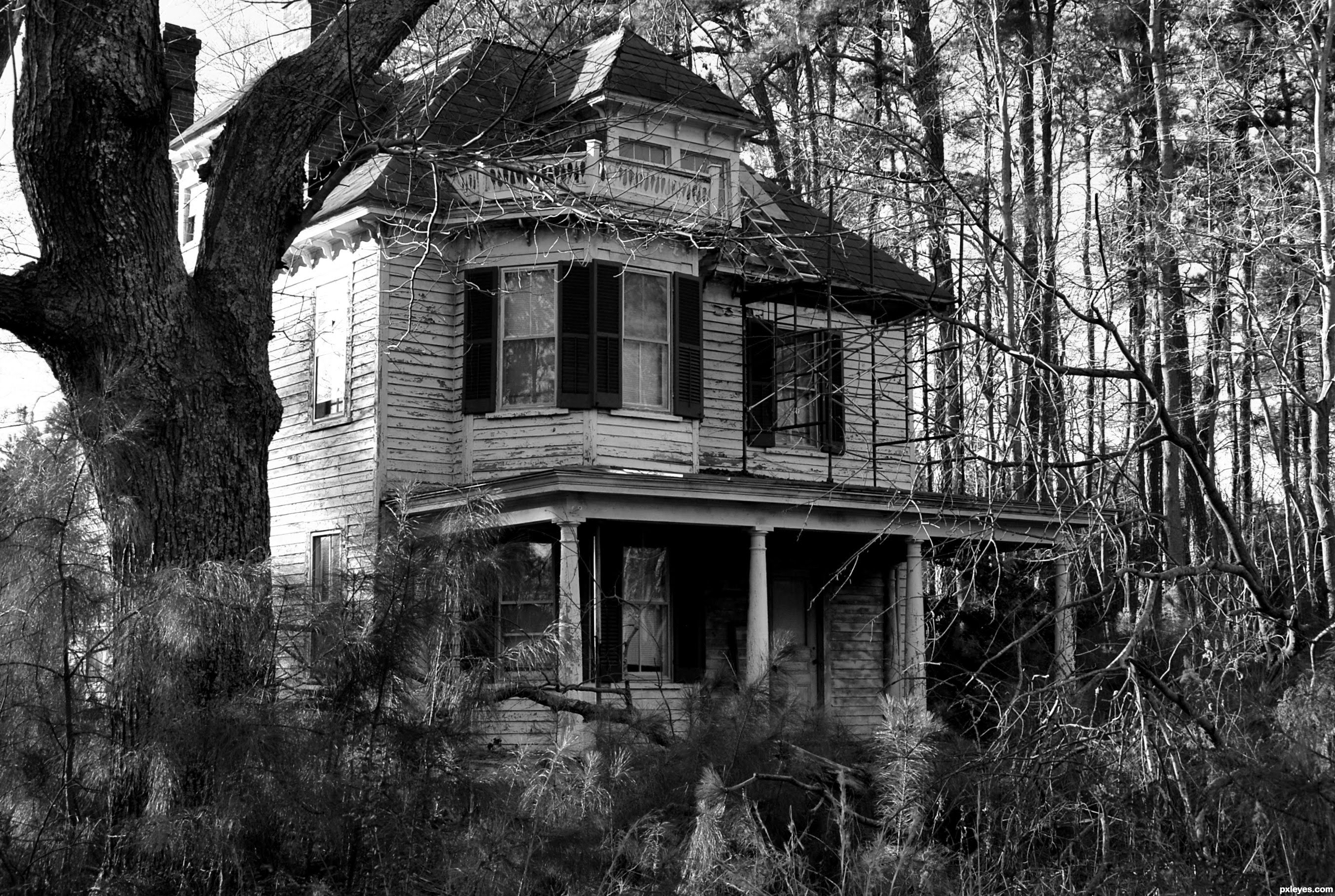 Haunted House 2K Full HD 2705x1816 black,green,pink,white Pictures